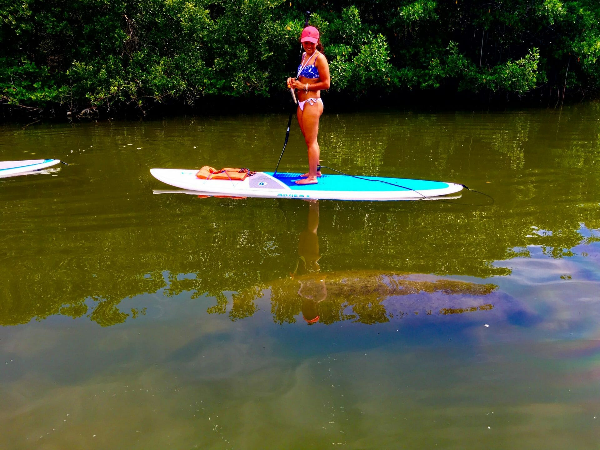 SOBE SURF MANATEE TOUR COCOA BEACH MERRITT ISLAND FLORIDA